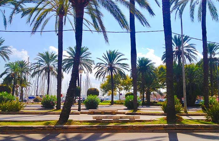 Palma De Mallorca City Guide Palma Co Uk